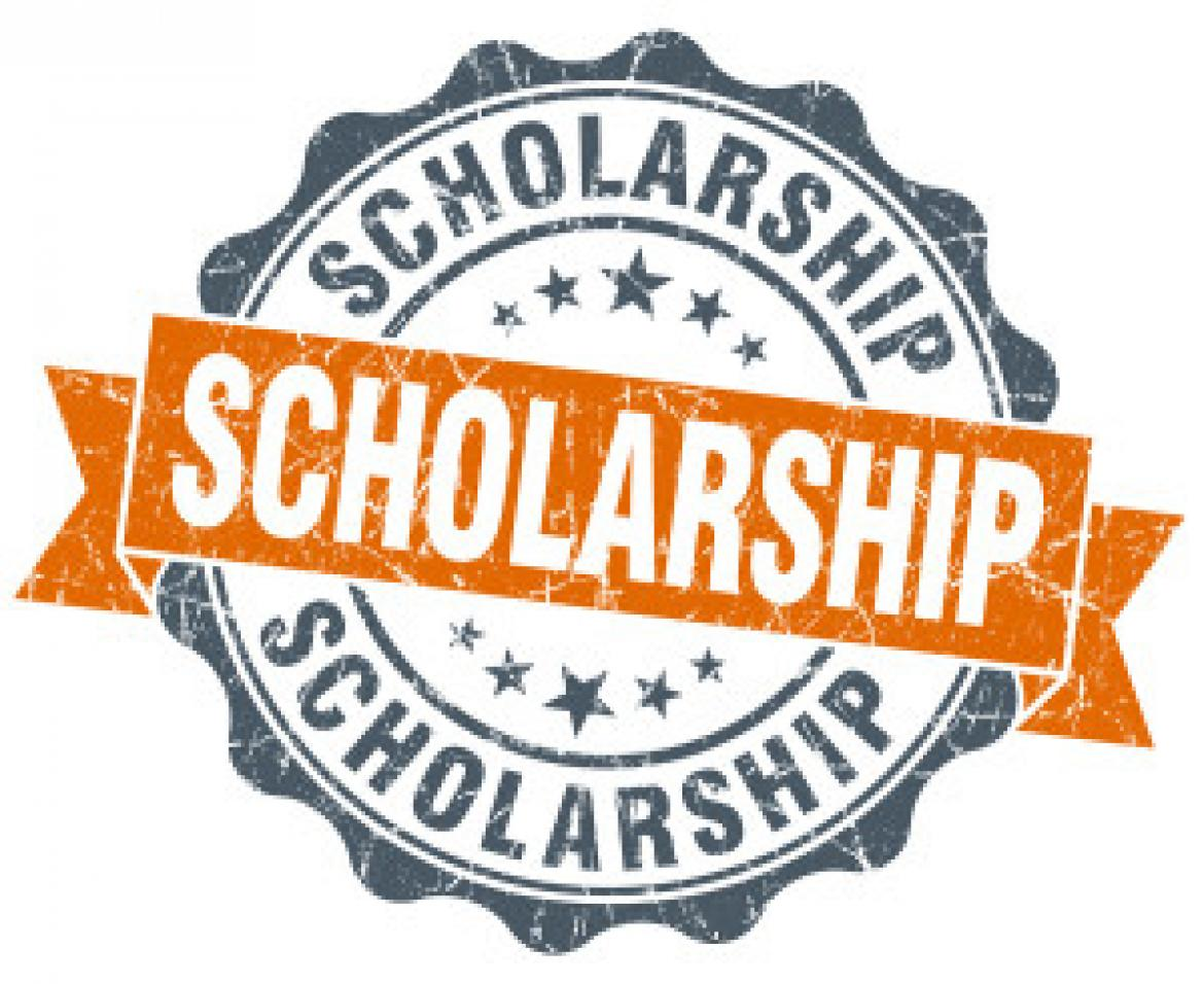 scholarship-300x245 General Scholarship Application Form on template parolees, editable pdf, examples high school, basic college, guyanese government, simple athletic, sample nz, chinese government,